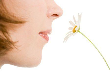 Rinofiller: Le 10 domande più comuni per conoscerlo meglio